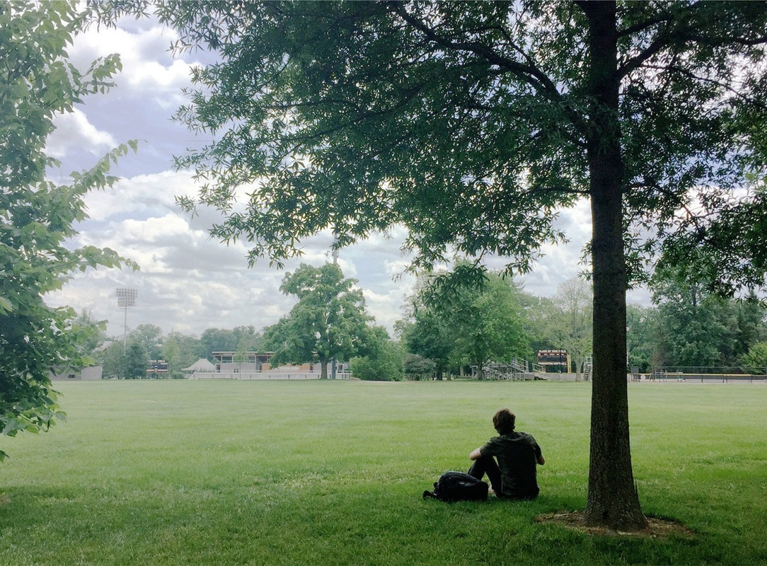 Grassy field with student and tree in foreground.